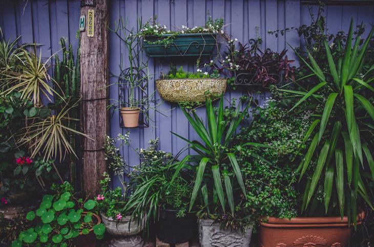 8 rendhagyó, inspiráló kerti ötlet