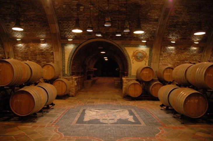 A szőlő és a Terrazzo Villany burkolat kapcsolata