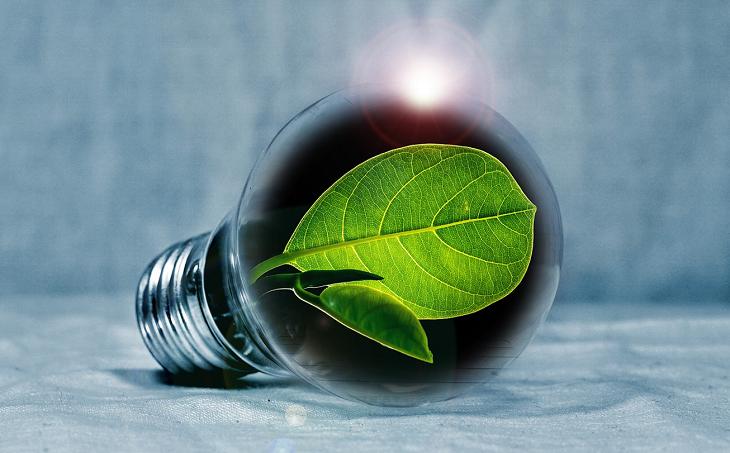 A fenntarthatóság jegyében